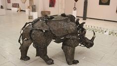 Andrei_Molnar_rinocerul