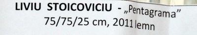liviu_stoicoviciu_artindex_05