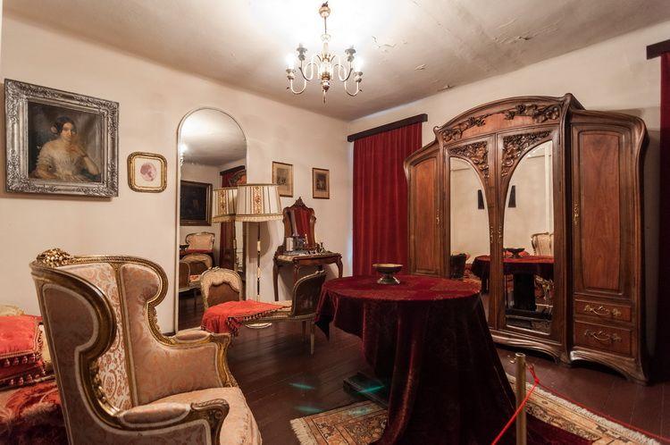 Casa Memoriala G. Enescu (11)