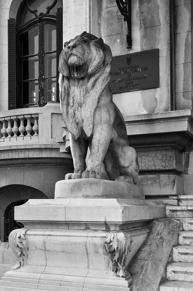 Palatul Cantacuzino - muzeul G. Enescu - exterior (13)