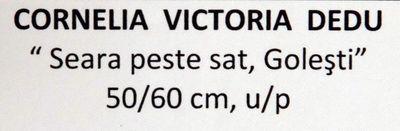 cornelia_victoria_dedu_artindex_04