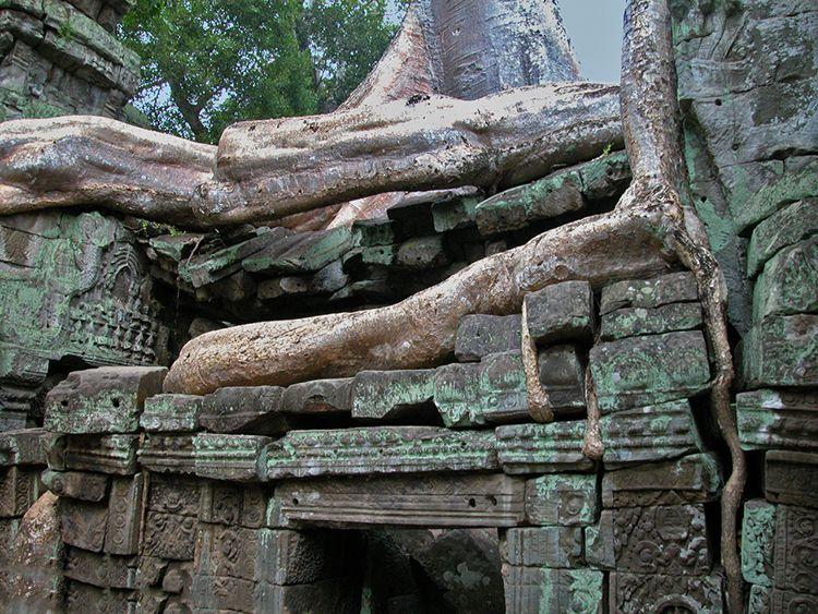 doinaang-TaProhm (13)