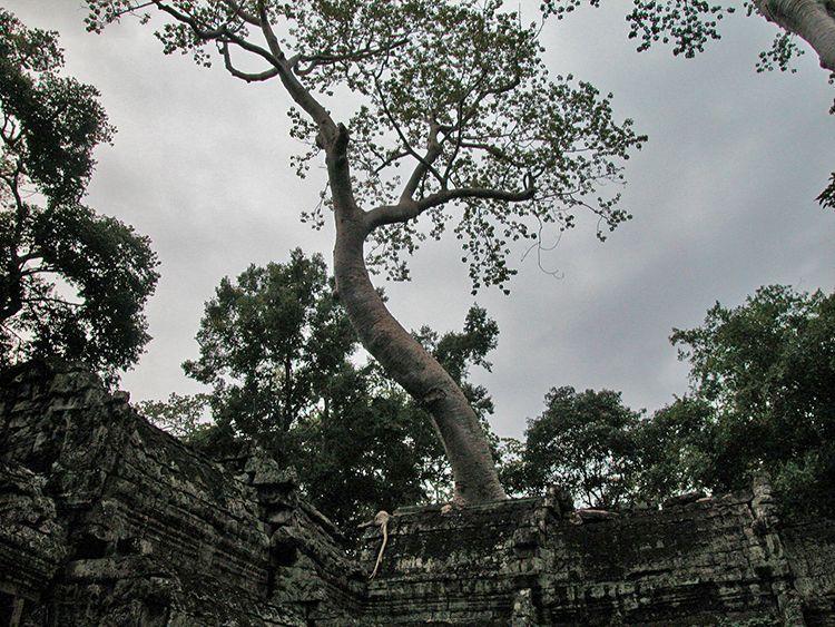 doinaang-TaProhm (16)
