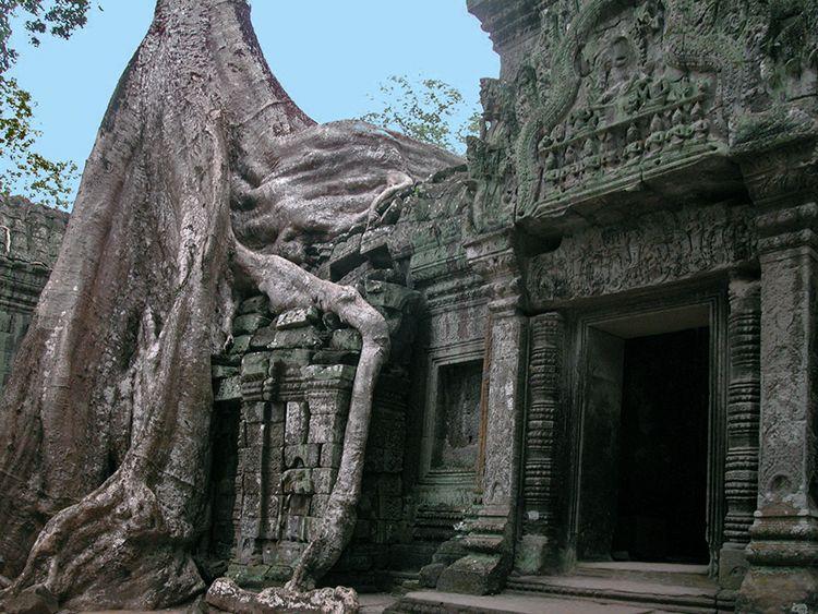 doinaang-TaProhm (9)