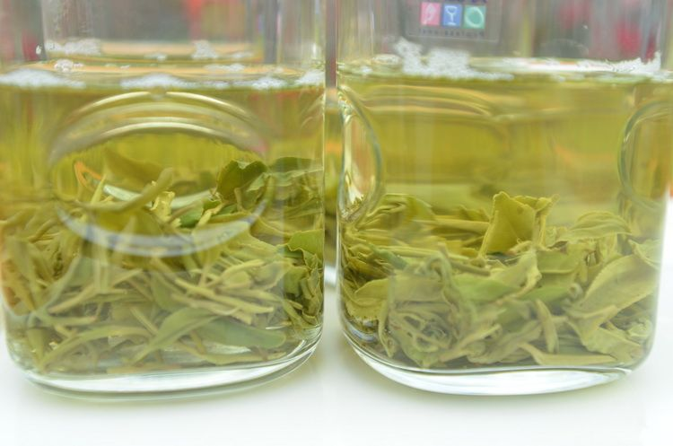 tea_ceai_china_artindex_24