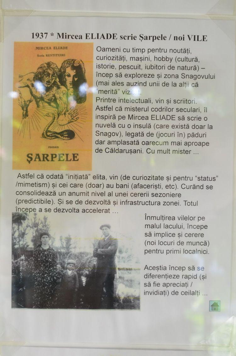 snagov_artindex_065
