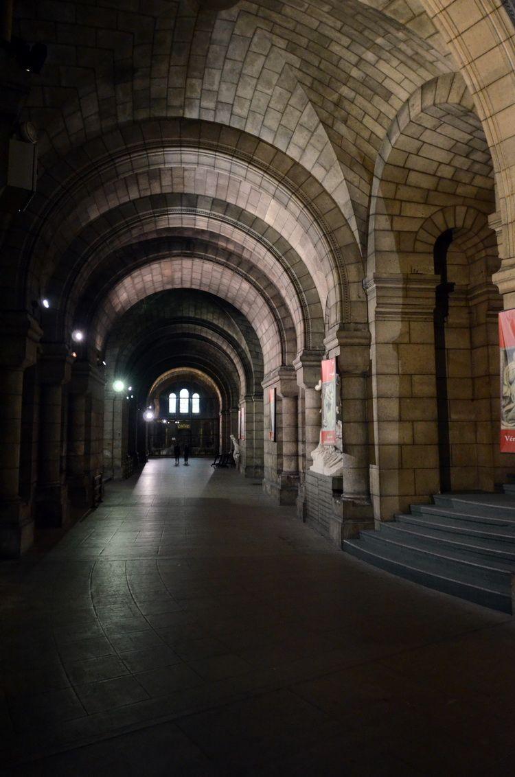 Sacre_Coeur_underground_artindex_013