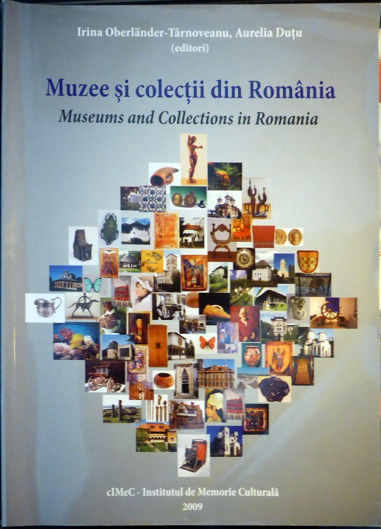 muzee_colectii_artindex_006