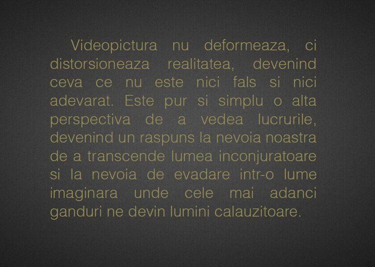 videopictura_artindex_003
