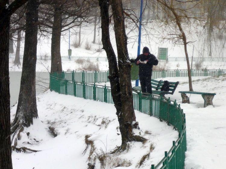Parcul_Circului_ian2014_Artindex_0033