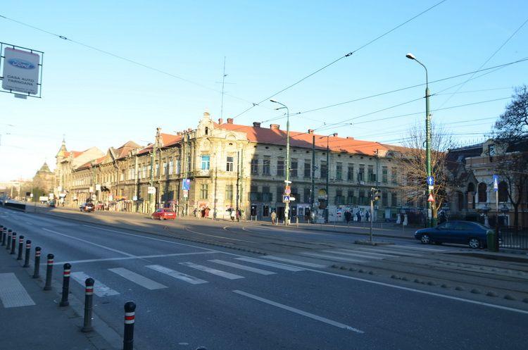 Timisoara_feb2014_Artindex_007