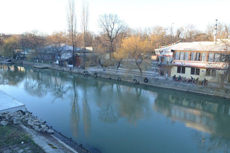 Timisoara_feb2014_Artindex_010