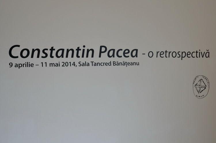 pacea_constantin_retrospectiva_mtr_artindex_001