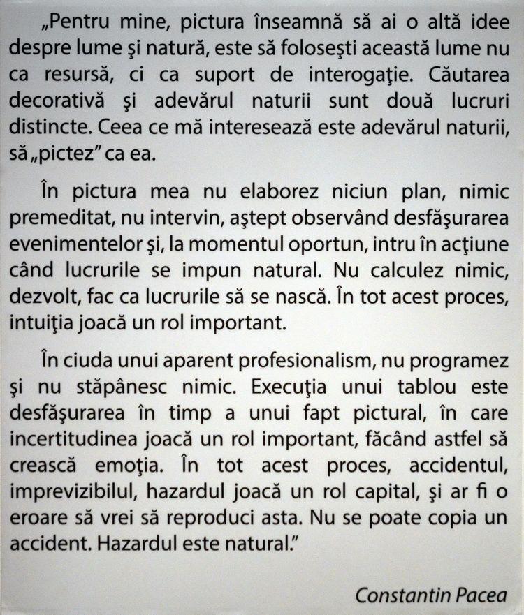 pacea_constantin_retrospectiva_mtr_artindex_003