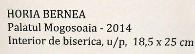 Bernea_Horia_Expo_Mogosoaia_mai2014_Artindex_057