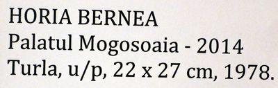 Bernea_Horia_Expo_Mogosoaia_mai2014_Artindex_082