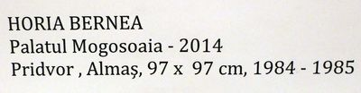 Bernea_Horia_Expo_Mogosoaia_mai2014_Artindex_087