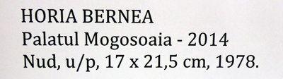 Bernea_Horia_Expo_Mogosoaia_mai2014_Artindex_122