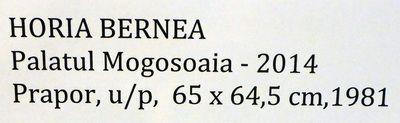 Bernea_Horia_Expo_Mogosoaia_mai2014_Artindex_132