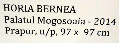 Bernea_Horia_Expo_Mogosoaia_mai2014_Artindex_135