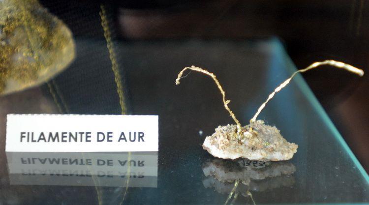 muzeul_aurului_brad_artindex_006