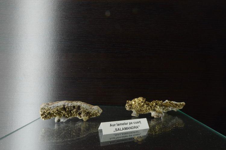 muzeul_aurului_brad_artindex_038