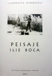 boca_ilie_album_peisaje_artindex_2