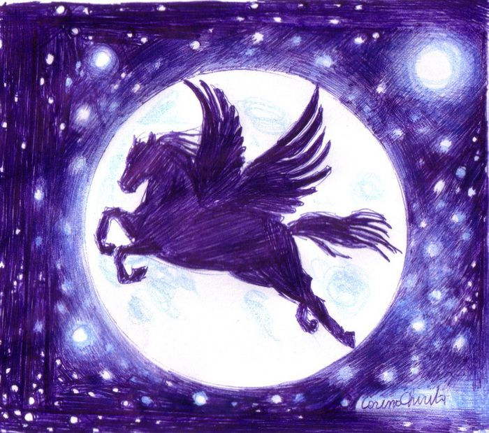 Pegasus pen drawing