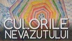 Afis-Culorile-nevazutului-FBb