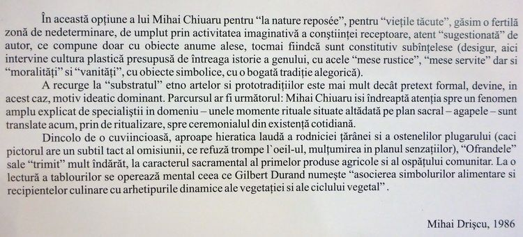chiuariu_mihai_album_artindex_04