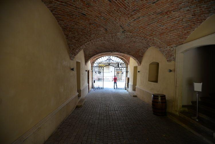 Cluj_artindex_11