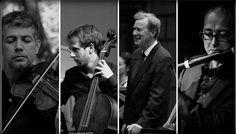 Bach by night - 27 noi.g 2015