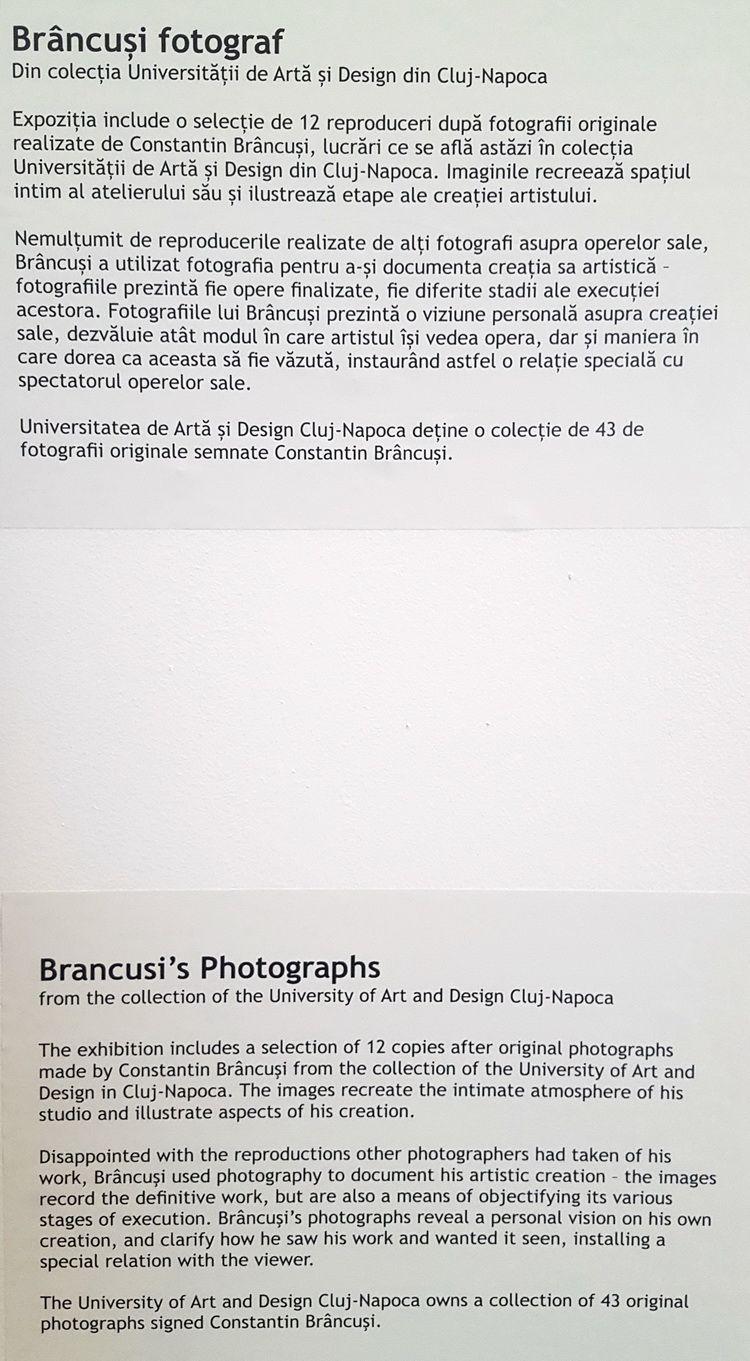 Brancusi_ArtSafari2016_04