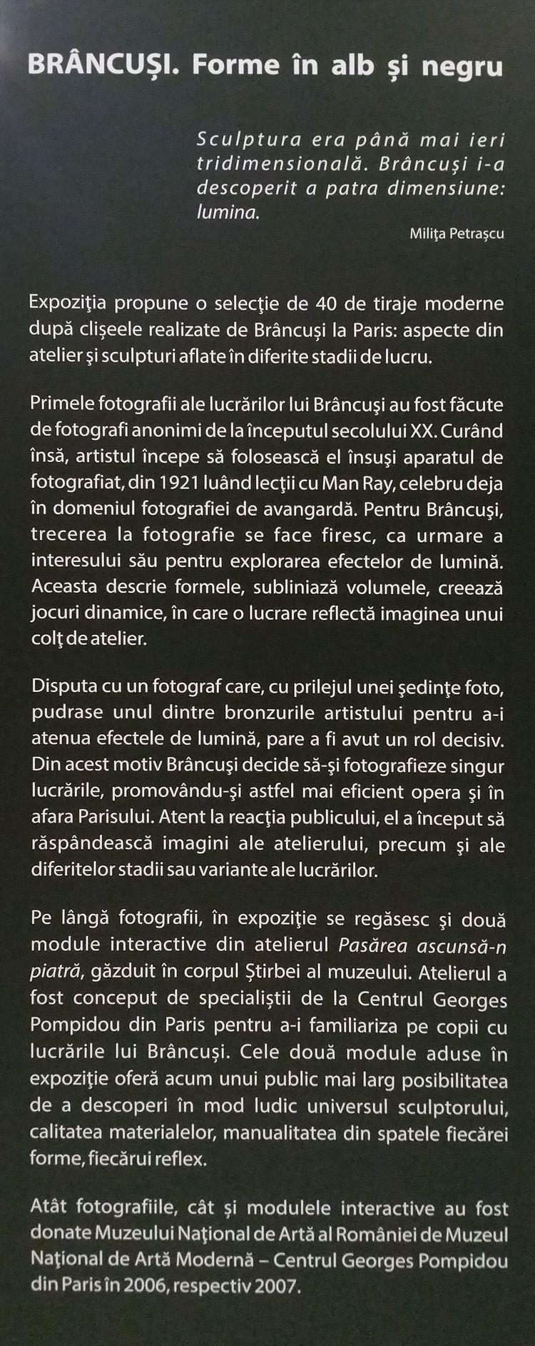 Brancusi_Artindex_14