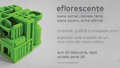2017 - Eflorescente (20 febr) - Inrvi b