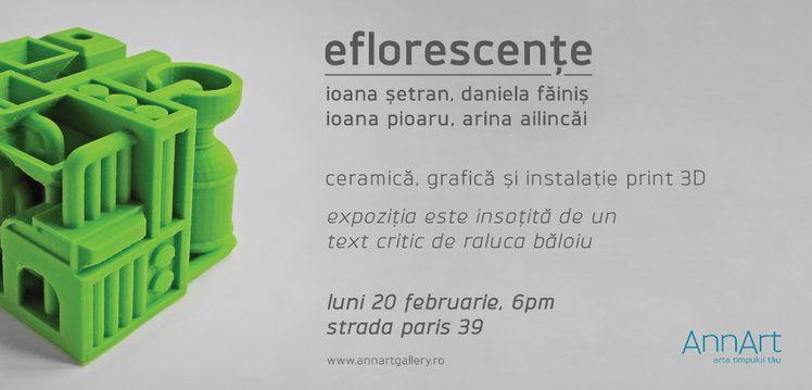 2017 - Eflorescente (20 febr) - Invi b
