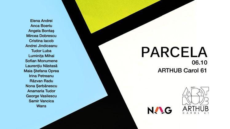 PARCELA ARTHUB Carol 61