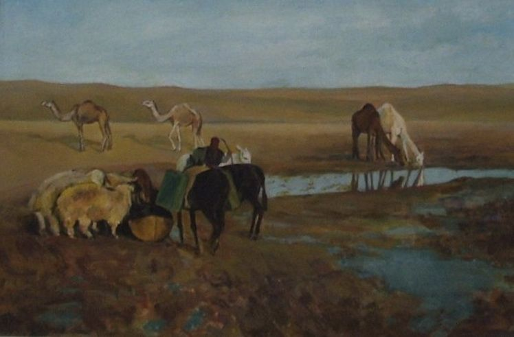 23. Mala Bedivan - Oaza in desert